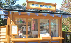Blizzard Beach Mini Donuts